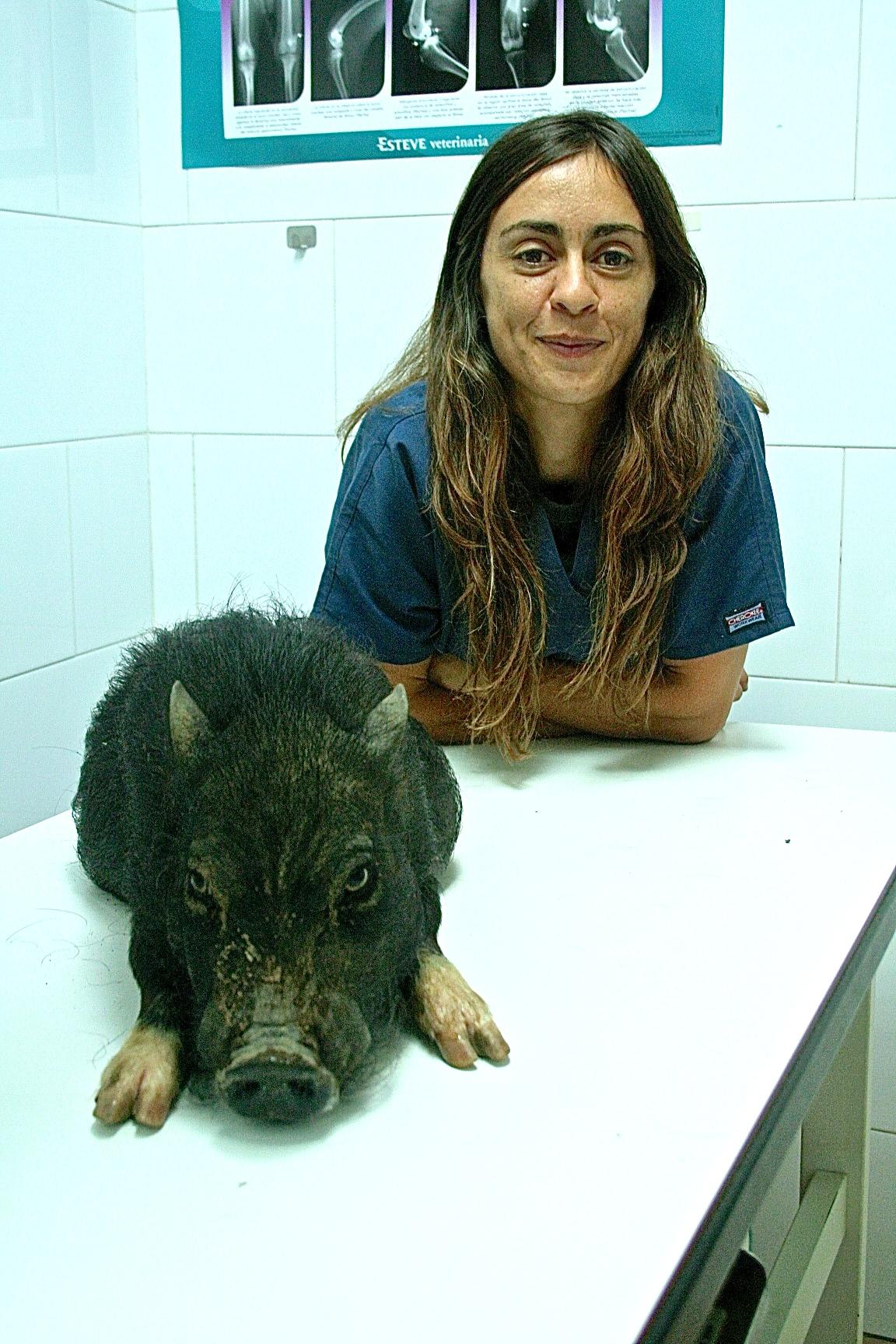 PAULAALVAREZTUNON(rehabilitacion)